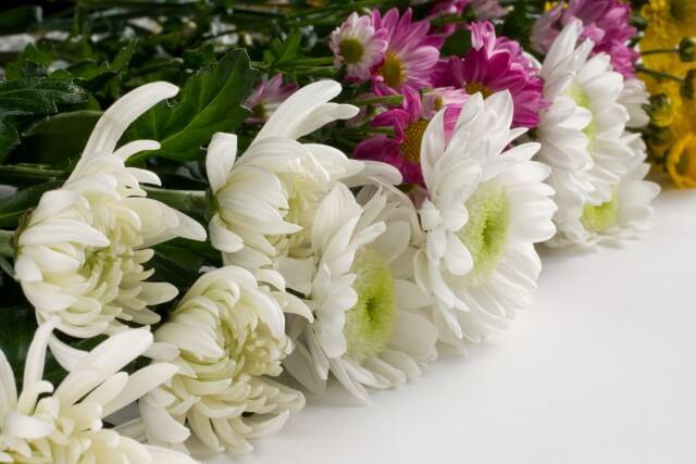 家族葬を行う遺族への会社側の対応やマナー