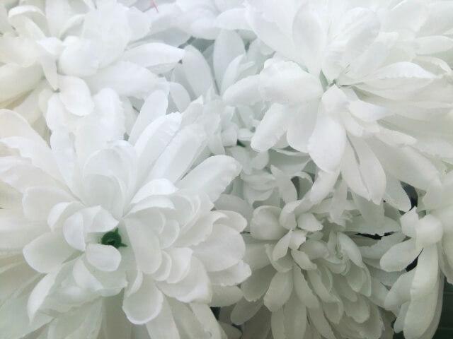 【初日の日程】ご逝去〜葬儀の打ち合わせ