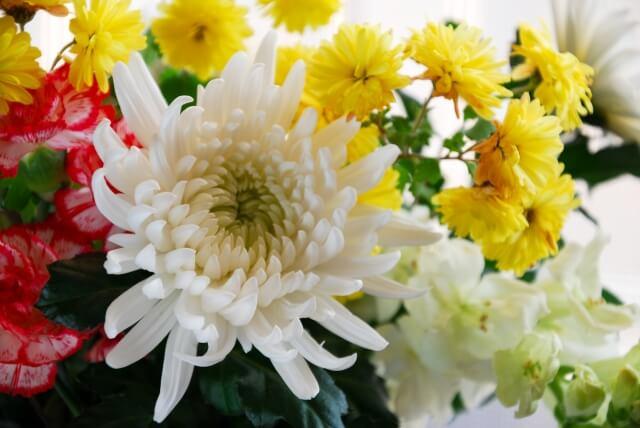 家族葬に参列する場合のマナー