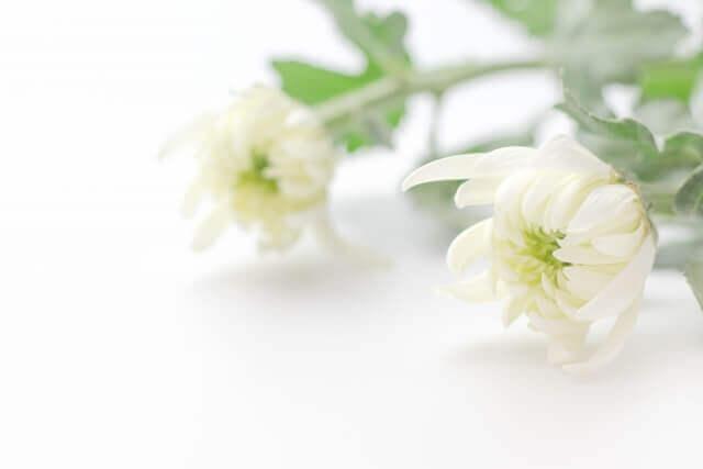 家族葬に弔電でお悔やみの言葉を送る注意点