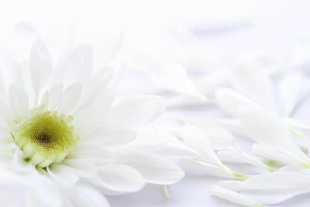 密葬で香典を辞退された場合の弔意の伝え方